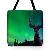 Mule Deer And Aurora Borealis Over Taiga Forest Tote Bag