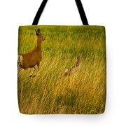 Mule Deer Doe And Fawn-signed-#0365 Tote Bag