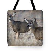 Mule Deer Does Tote Bag