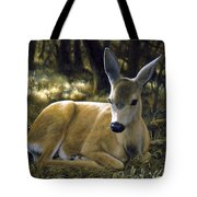 Mule Deer Fawn - A Quiet Place Tote Bag by Crista Forest