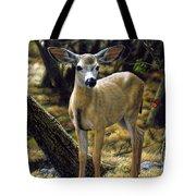 Mule Deer Fawn - Monarch Moment Tote Bag