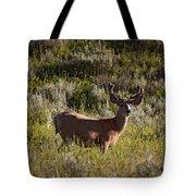 Mule Deer In Velvet   #2114 Tote Bag