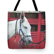 Mule Head Tote Bag
