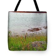 Mulholland Point Lighthouse On  Campobello Island-nb Tote Bag