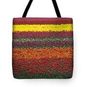 Mult-colored Tulip Field Tote Bag