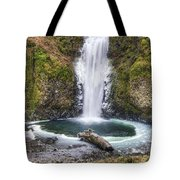 Multhomah Falls In Winter Tote Bag