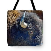 Multi-color-eyed Bison Near Wildlife Loop Road In Custer State Park-south Dakota Tote Bag
