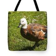 Multi-colored Paridise Duck Tote Bag