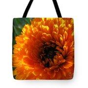Multi Petals African Daisy Tote Bag