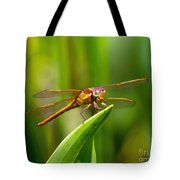 Multicolored Dragonfly Tote Bag