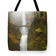 Multnomah Autumn Mist Tote Bag by Mike  Dawson
