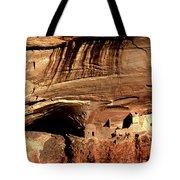 Mummy Cave Ruin Tote Bag