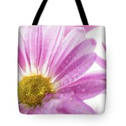 Mums Flowers Against A White Background Tote Bag