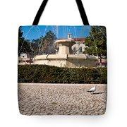 Municipal Square Fountain Tote Bag