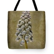 Muscari Armeniacum With Textures Tote Bag by John Edwards
