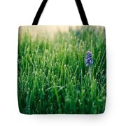 Muscari Or Grape Hyacinth Tote Bag