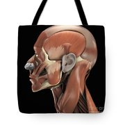 Muscles Of The Head Tote Bag