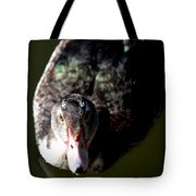 Muscovy 14-2 Tote Bag
