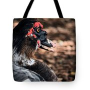 Muscovy Feathers Tote Bag