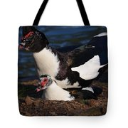 Muscovy Lovers Tote Bag