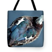 Muscovy Plummage Tote Bag