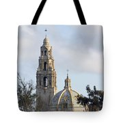 Museum Of Man Tote Bag