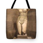 Museum Series 09 Tote Bag