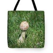 Mushroom 01 Tote Bag