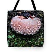 Mushroom 1 Tote Bag