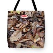 Mushroom And Leaves Tote Bag
