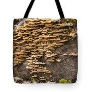 Mushroom Log Tote Bag