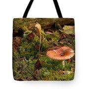 Mushroom N Moss Tote Bag