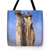Mushroom Stems Tote Bag