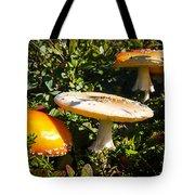 Mushroom Tops Tote Bag
