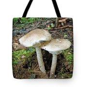 Mushroom Twins - All Grown Up Tote Bag