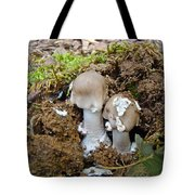 Mushroom Twins - As Youngsters Tote Bag