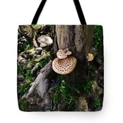 Mushrooms And Flowers Tote Bag