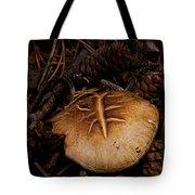 Mushrooms And Pine Combs   #3659 Tote Bag