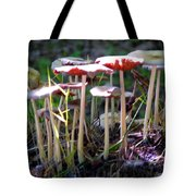 Mushrooms In Sunlight Tote Bag