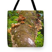Mushroom's Kingdom Tote Bag