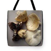 Mushrooms With Watercolor Effect 5 Tote Bag