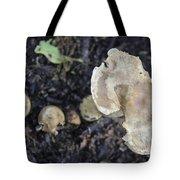 Mushy Mushrooms Tote Bag