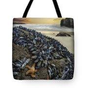 Mussel Beach Tote Bag
