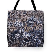 Mussels And Barnacles, Low Tide Tote Bag