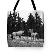 Mustang Challenge 6 Bw Tote Bag