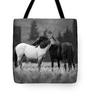 Mustangs Grooming 1 Bw Tote Bag