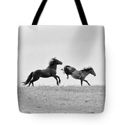Mustangs Sparring 1 Tote Bag by Roger Snyder
