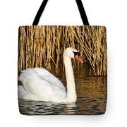 Mute Swan By Reed Beds Tote Bag