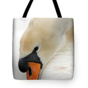 Mute Swan Fine Art Photograph Tote Bag