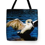 Mute Swan Majesty Tote Bag